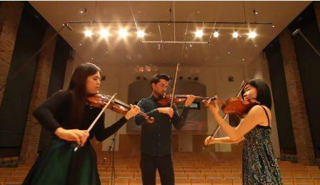 Hermann Capriccio 3 Violins Cover