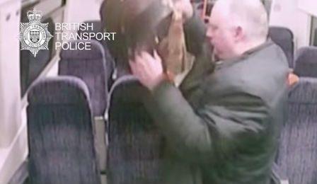 British Police Stolen Viola Stephen Tillyer Cover