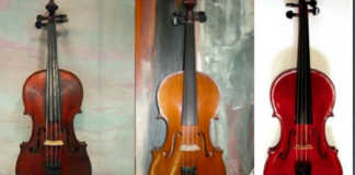 Stolen Violin Viola Cello Melbourne Cover