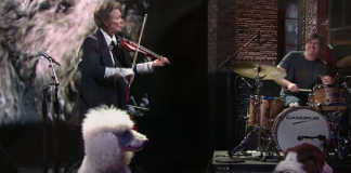 Laurie Anderson Song for Dogs