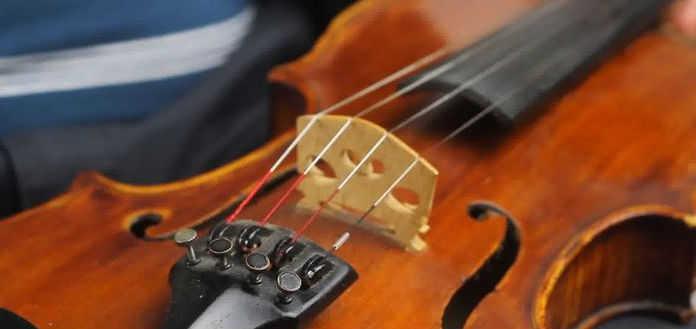 Violin Tuning Screw Eye Legal