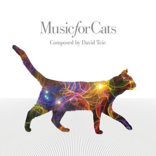 musicforcats-vr20160822-layered