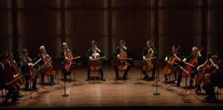12 Cellists