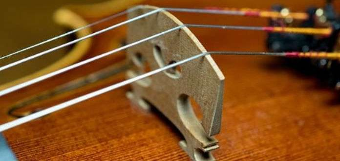 Violin Bridge Cover