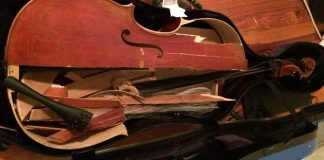 Destroyed Cello