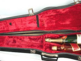 Inside Violin Case