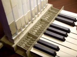 Paper Organ