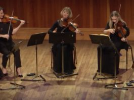 Michael Hill International Violin Competition Semi Final Cover