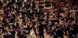 New Zealand Symphony Audition