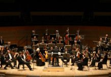 Edmonton Symphony Audition