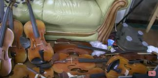 Violin Collection Trashed Cover
