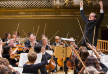 Boston Symphony Orchestra Violin Audition