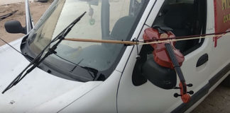 Car Playing Violin