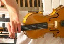 Stolen 2003 Chris Johnson Violin