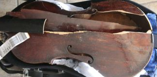 Herzog Destroyed Violin