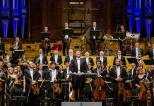 Auckland Philharmonia Orchestra Audition