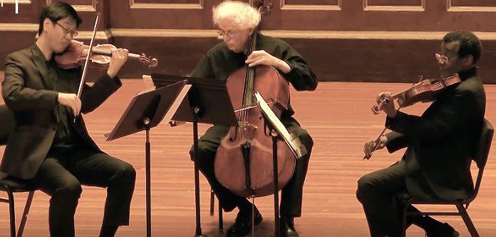 NEC Mozart Trio Divertimento